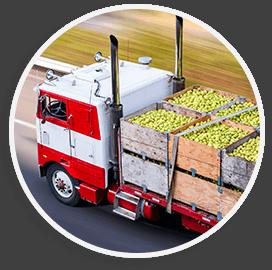 Last Mile Filfilment | Addicon Logistics